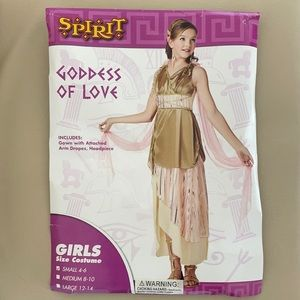 Girls goddess costume